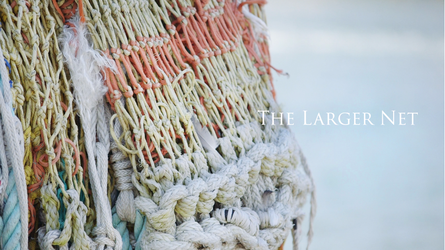 The Larger Net