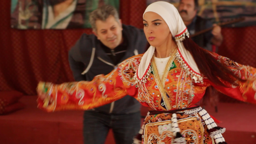Heavenly Journeys. Insights into Alevi Ritual Dance. Marcel Klapp 2015.