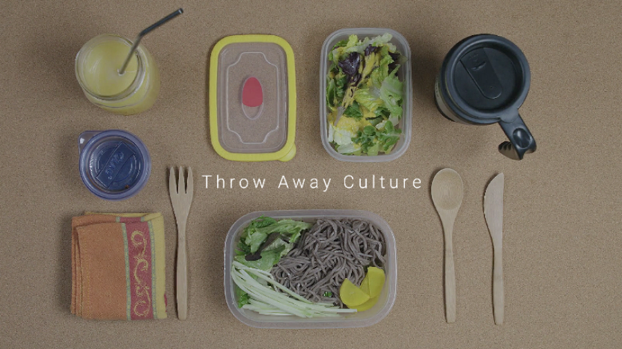 Throw Away Culture