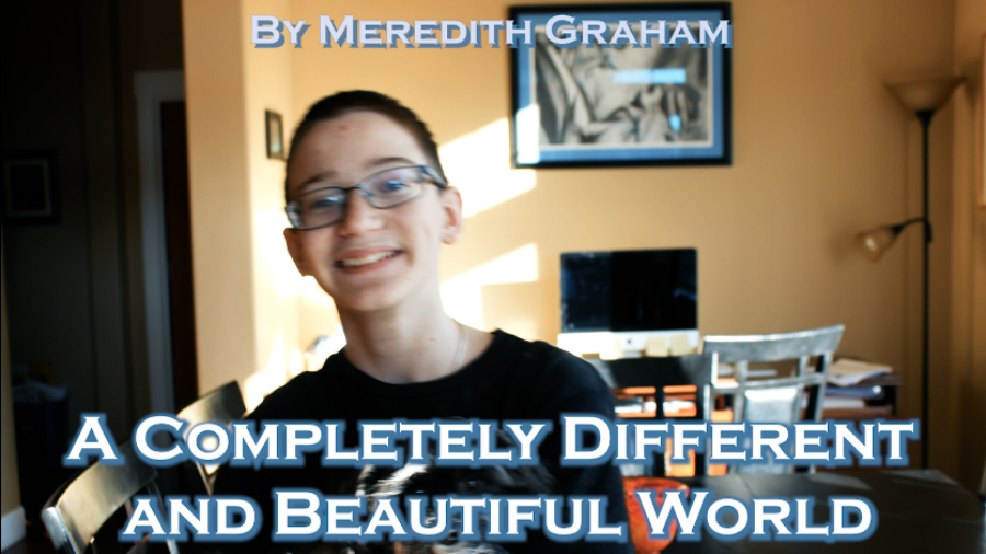 A Completely Different and Beautiful World- By Meredith Graham