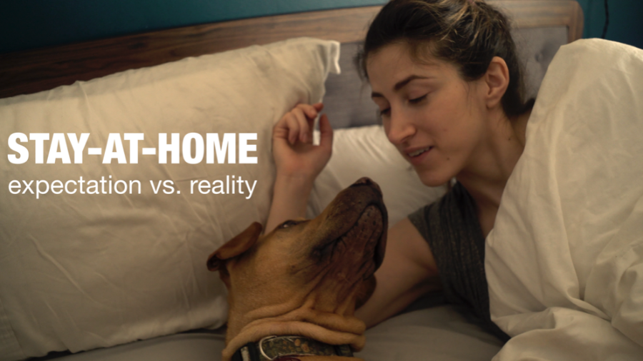 Stay-At-Home Expectation vs. Reality
