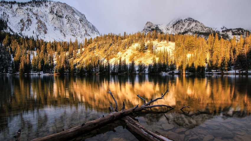Montana is Beautiful - Short film by Mike Kvackay