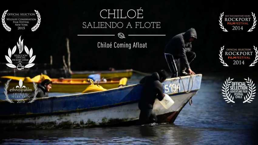 Chiloe Coming Afloat