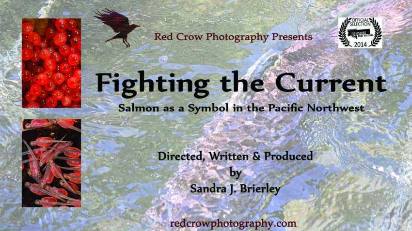 Fighting the Current: Salmon as a Symbol in the Pacific Northwest